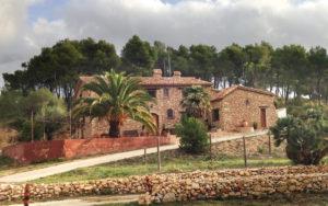 2-masia-pou-vinya-olivella
